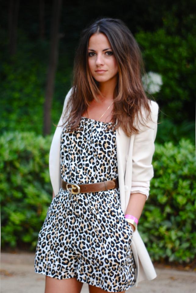 794266_leopard.jpg